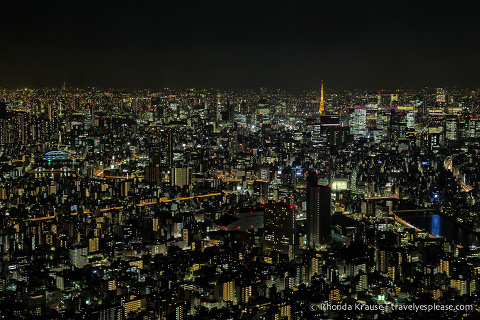 travelyesplease.com | How to Spend 4 Days in Tokyo- Our Itinerary
