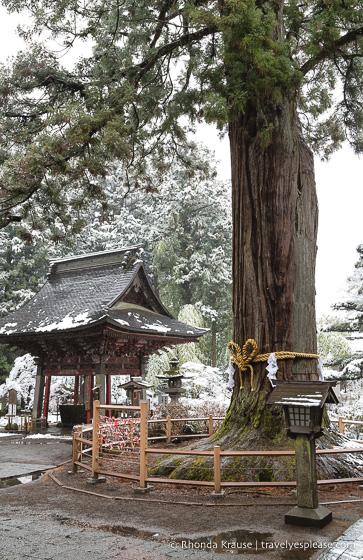 travelyesplease.com | Fujiyoshida Sengen Shrine- The Traditional Starting Point for Climbing Mt. Fuji