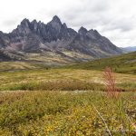 A Week in the Yukon- Unforgettable Experiences in Canada's Northwest