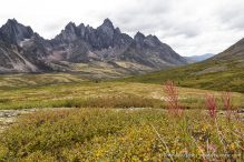 travelyesplease.com | How to Spend a Week in the Yukon- Unforgettable Experiences in Canada