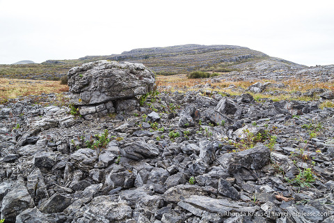 travelyesplease.com | Hiking in Burren National Park- An Unexpected Landscape in Ireland