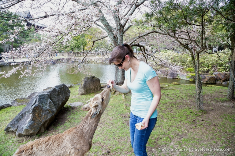 Rhonda Krause | Travel Photographer, Travel Blogger
