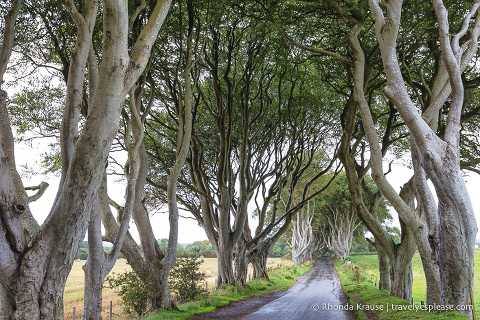 travelyesplease.com   What to Expect on Your First Trip to Ireland: A First Time Visitor's Guide