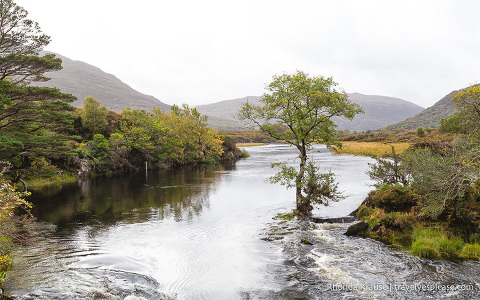 travelyesplease.com | Killarney National Park Pictures