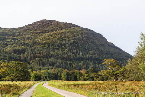 travelyesplease.com | Killarney National Park- Photo Series