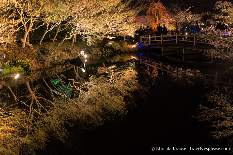 travelyesplease.com | Nabana no Sato Winter Illumination- A Stunning Light Festival in Japan