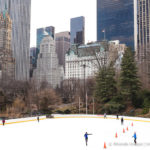 The Best of Central Park- Self-Guided Walking Tour