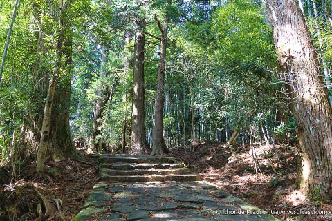 travelyesplease.com | Exploring Nachisan- A Sacred Mountain Site on the Kumano Kodo Pilgrimage