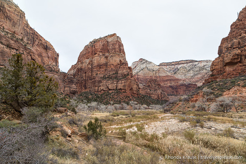 travelyesplease.com | Angels Landing Trail- What to Expect on Zion National Park's Most Thrilling Hike