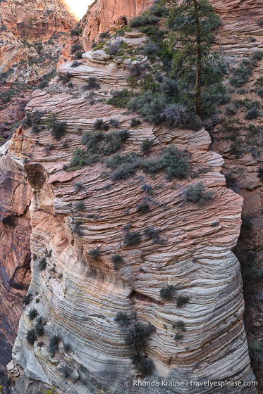 travelyesplease.com | Observation Point Trail- A Classic Hike in Zion National Park
