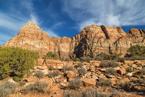 travelyesplease.com | Hiking Watchman Trail in Zion National Park