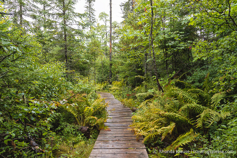 travelyesplease.com | A Nature-Filled Vacation in the Laurentians, Quebec