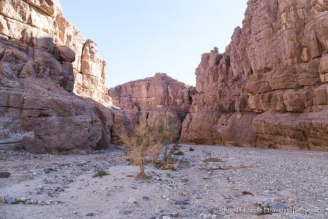 travelyesplease.com | Hiking Ladder Canyon and Painted Canyon Trail- Mecca, California