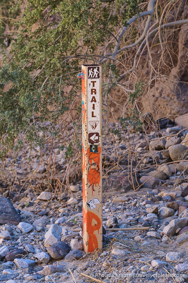 travelyesplease.com | Ladder Canyon Trail Guide- Hiking in the Mecca Hills Wilderness