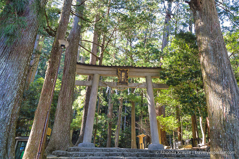 travelyesplease.com | Beautiful Shinto Shrines in Japan- The Best Shrines to Visit in Japan