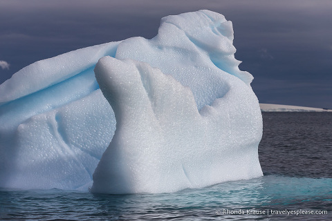 Visiting Antarctica- Things to Know Before You Go