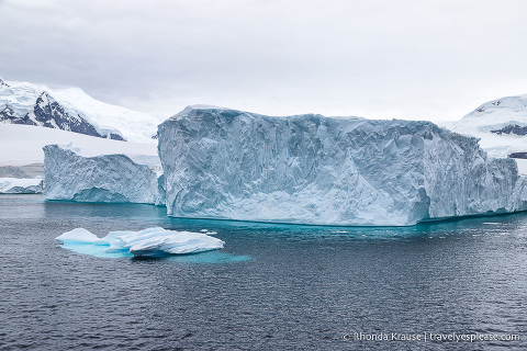 Travelling in Antarctica- What to Expect