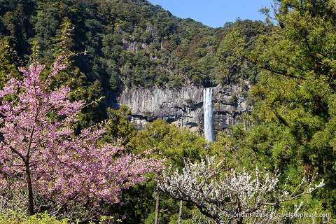 Scenic Spots in Japan- Best Places in Japan to Visit for Beautiful Scenery