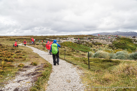 Things to Do in Stanley, Falkland Islands