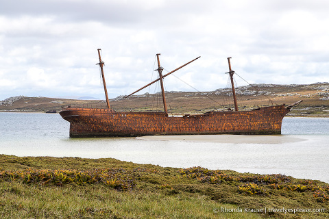 One Day in Stanley- Things to Do in the Capital of the Falkland Islands