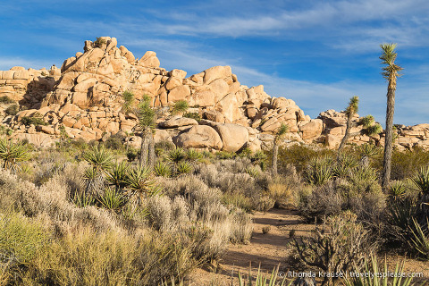 American Southwest Road Trip Itinerary