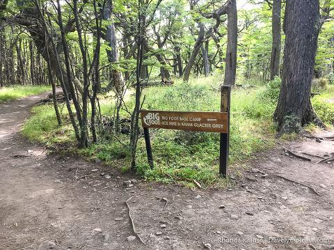 Hiking trail to Grey Glacier