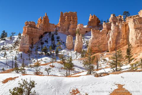 Scenery on Fairyland Trail