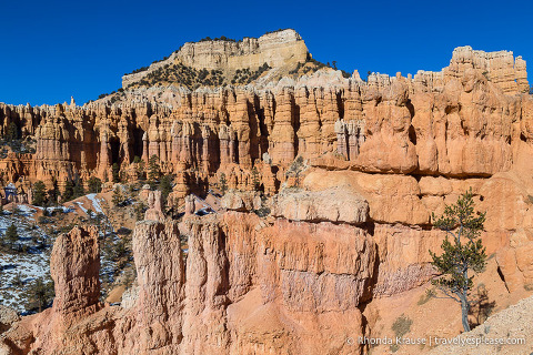 Hoodoos on Fairyland Trail in Bryce Canyon National Park