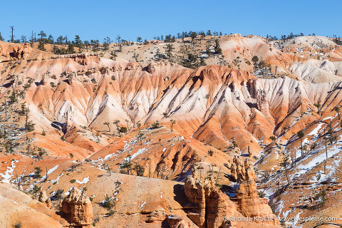 Orange and white layered mounds of sand in Bryce Amphitheatre
