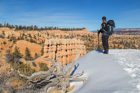 View of Bryce Amphitheatre from the Rim Trail
