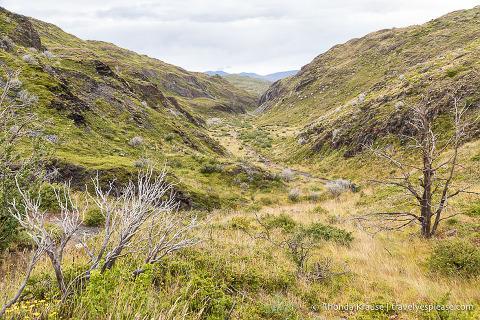 Valley on the Grey Glacier trail