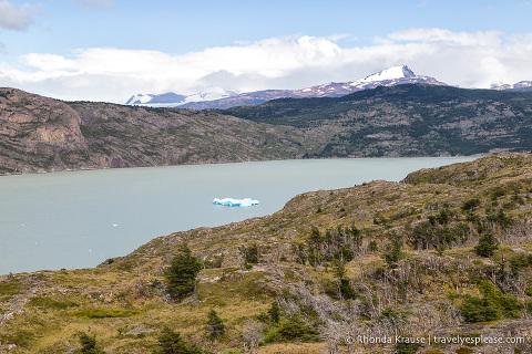 Iceberg floating in Lago Grey