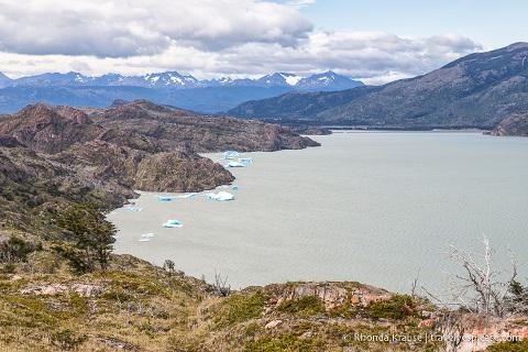 Icebergs floating in Lago Grey