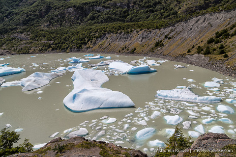 Icebergs floating in Lago Grey near Grey Glacier