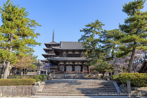 Japan bucket list- Admire the world's oldest wooden buildings (entrance to Horyu-ji Temple)