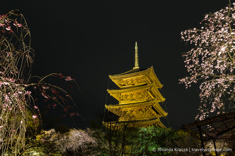Pagoda at To-ji Temple illuminated at night