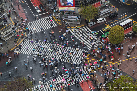 Things to do in Japan- Experience the contrasts of Tokyo (Shibuya Scramble Crossing)