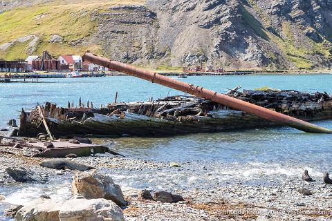 Ruined ship in Grytviken