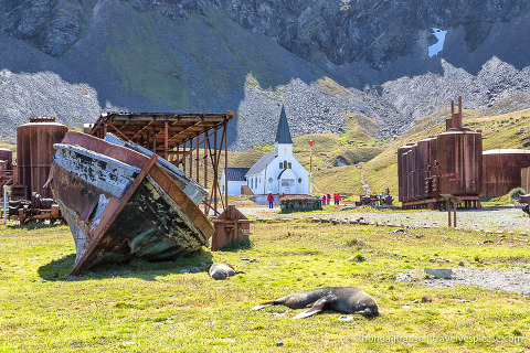 Ruins of the Grytviken Whaling Station- South Georgia Island