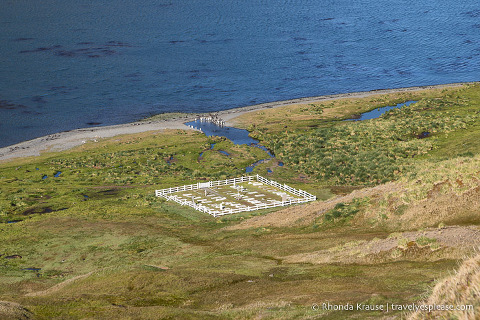 View of Grytviken Cemetery from above