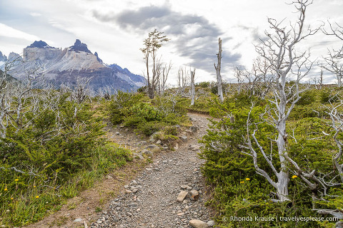 Cuernos del Paine and the trail to the French Valley.