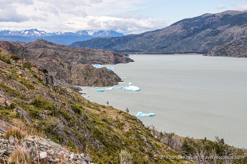 Small icebergs in Lago Grey.
