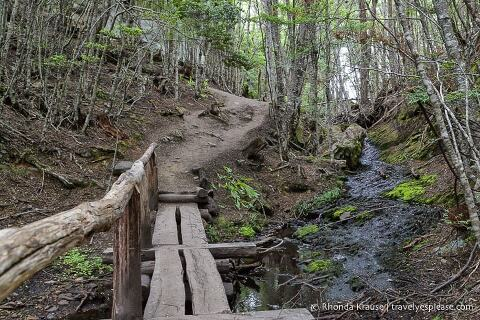 Small wooden bridge on the hiking trail.