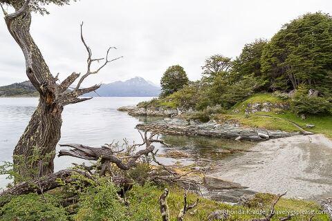 Hiking in Tierra del Fuego National Park- The Coastal Trail (Senda Costera).