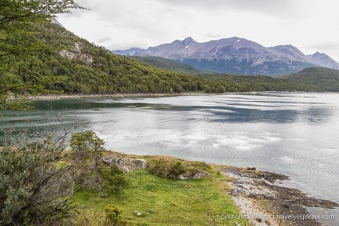 View of Lapataia Bay seen while hiking the Coastal Trail in Tierra del Fuego National Park.