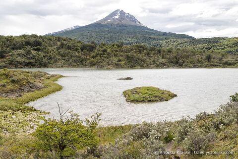Tierra del Fuego National Park in Argentina.