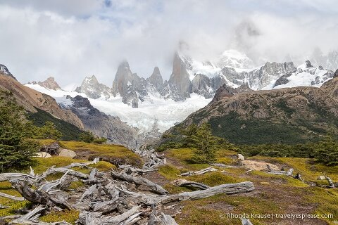 A row of logs leading towards a glacier on Mount Fitz Roy.