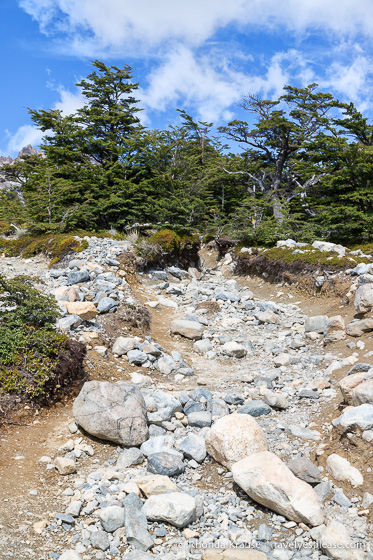 Rock covered trail.