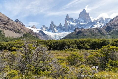 Mt. Fitz Roy overlooking some trees and bushes.