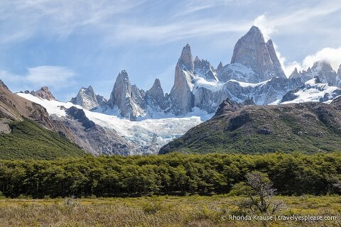 Glacier covered Mount Fitz Roy overlooking a row of trees.